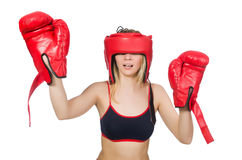 Woman boxer Royalty Free Stock Photo