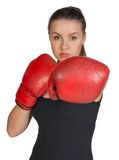 Woman in boxing gloves. Punching pose Royalty Free Stock Photography