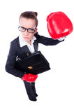 Woman with boxing gloves Stock Photography