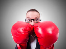 Woman with boxing gloves on white Stock Photos
