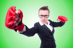 Woman with boxing gloves on white Stock Photography