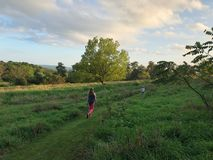 Woman and boy in field - summertime evening stock photo