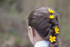 Woman with braided hair and flowers in her hair Royalty Free Stock Images