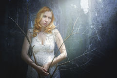 Woman with branches Stock Photography