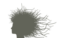 Woman with branches hair Stock Photography