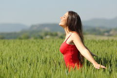 Woman breathing fresh air in a meadow and touching the wheat. Profile of a casual woman breathing fresh air in a meadow and touching the green wheat wearing a Royalty Free Stock Photos