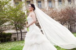 Woman bride dress veil Royalty Free Stock Image