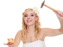 Woman bride with hammer about to smash piggy bank. Money saving, marriage and high wedding cost concept. Funny woman bride with hammer about to smash piggy bank Stock Images