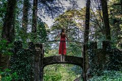 A woman on a bridge in a lush forest in Sintra, Portugal stock photo
