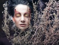 Woman with bright make up with dry branches Stock Photos