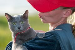Woman in a bright red cap in a blue sweater with a blue cat in a red collar on her hands stock photo