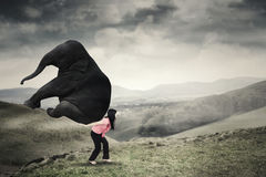 Woman brings elephant on mountain Stock Photography