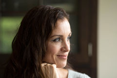 Woman with Brown Hair Beautiful Brown Eyes Royalty Free Stock Images