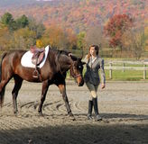 Woman with Brown Horse in Fall. Equestrian with bay warmblood standing under Fall Tree Stock Photos