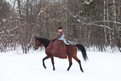 Woman in the brown riding habit. Keeps the Arab racer Stock Photos