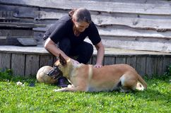 Woman brushes her dog. Woman brushes her Belgian Malinois dog Royalty Free Stock Photography