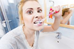 Woman brushing cleaning teeth in bathroom Stock Photography