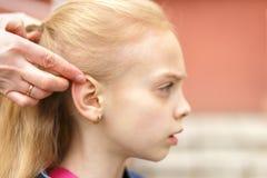 Woman brushing her daughter hair royalty free stock image