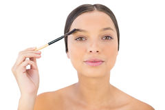 Woman brushing her eyebrow Stock Images