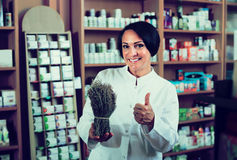 Woman with bunch of dried herbs in drugstore Royalty Free Stock Photography