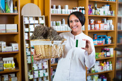 Woman with bunch of dried herbs in drugstore Stock Images