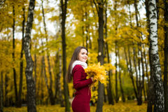 Woman with bunch of maple leaves. Woman with bunch of autumn orange maple leaves royalty free stock photography