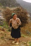 The woman with the bundle back. A woman rises from the bottom of the steep valley with a bundle of dry twigs on the back that used to start the fire for cooking Stock Image