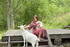 Woman in a burgundy dress on a farm with a goose in her arms and a white goat. Near royalty free stock image