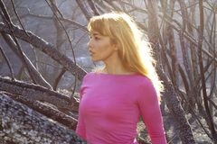 Woman and Burned Trees. Attractive young blonde woman in fuschia shirt standing in front of burned chapparel after it was destroyed by fire, sunlight on hair stock photo