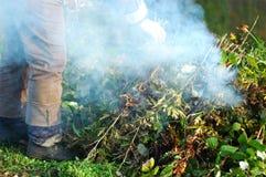 Woman burning the stalks in the garden. Work in the gardenn Stock Images