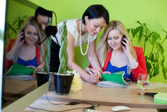 Woman business office teamwork Royalty Free Stock Image