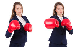 The woman businesswoman with boxing gloves on white Royalty Free Stock Photography