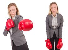 The woman businesswoman with boxing gloves on white Stock Photography