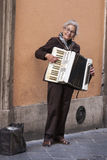 Woman busker playing accordion. White hair street artist Stock Photography
