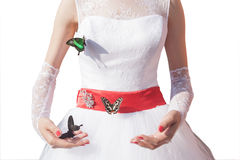 Woman with butterfly Stock Photos
