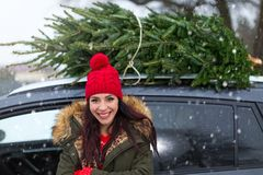 Woman buying Christmas tree Stock Photography