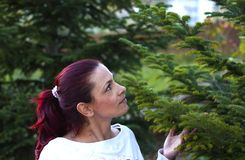 Woman buying the Christmas tree. Young woman choosing the Christmas tree. Looking at tree, thinking, touching the branches Stock Photos