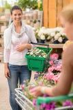 Woman buying flower shopping basket garden center Stock Images