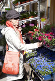 Woman buying flowers Stock Images