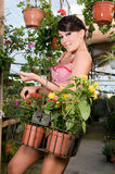 Woman buying flowers in spring time Stock Image