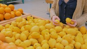 Woman buying fresh yellow lemons at grocery store. Woman buying fresh citrus fruits - yellow lemons at supermarket. Consumerism, sale, organic and health care stock footage