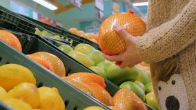 Woman buying fresh exotic citrus fruits at grocery store. Woman buying fresh exotic citrus fruits - sweetie, sweety, pomelo at supermarket. Close up shot of stock video