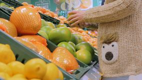 Woman buying fresh exotic citrus fruits at grocery store. Woman buying fresh exotic citrus fruits - sweetie, sweety, pomelo at supermarket. Close up shot of stock footage