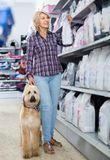 woman buying pet food for Afghan Shepherd puppy in shop for animal stock image