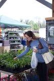 Woman buying produce Stock Image