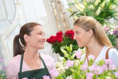 Woman buying some flowers stock photography