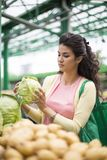 Woman buying vegetables on the market Royalty Free Stock Photography
