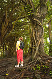 Woman in a Banyan tree forest. Big Island of Hawaii Stock Photos