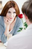 Woman at the cafe with scarlet rose Stock Images