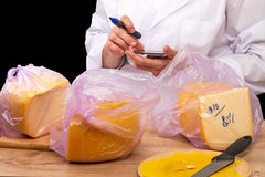Woman with a calculator and packed cheese Stock Image